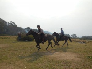 Cantering outside Craig's Hut